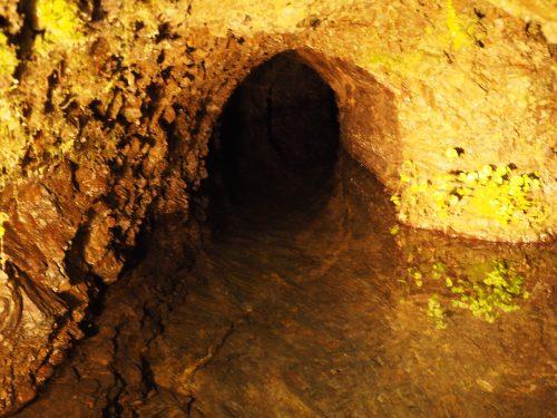 小澤酒造が利用している奥多摩の湧水